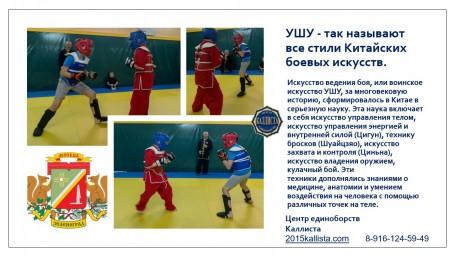 УШУ - так называют все стили Китайских боевых искусств.