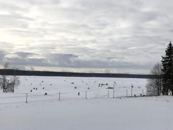 Зимняя рыбалка - Ильинский пляж